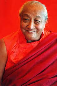 DilgoKRinpoche
